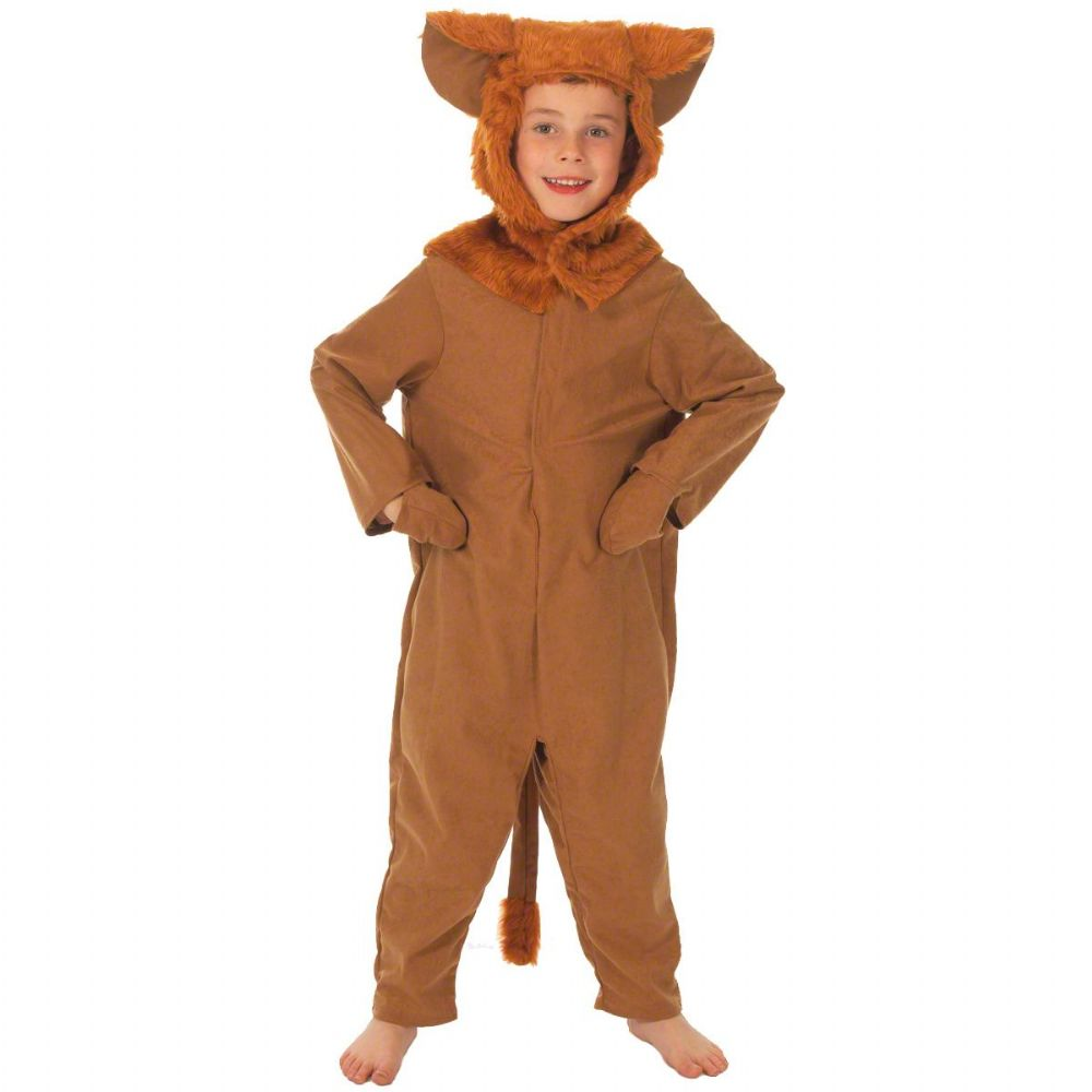 Childrens Boys and Girls Wild Jungle Lion Wizard of Oz